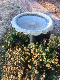 Outdoor aluminum/metal bird bath